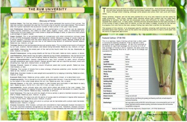 agriculture focus 1.jpg