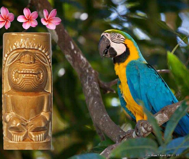 The Jungle Bird