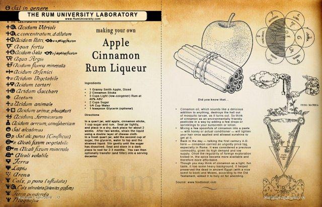 Making your own Apple Cinnamon Rum Liqueur