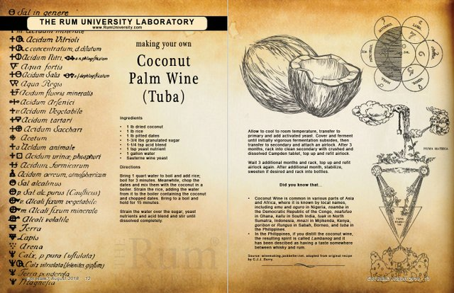 making your own coconut palm wine (Tuba)
