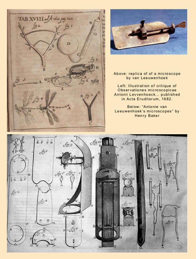Illustrations of Portrait of antonie van leeuwenhoek work