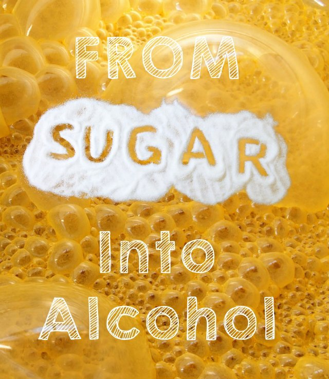 From Sugar to Alcohol