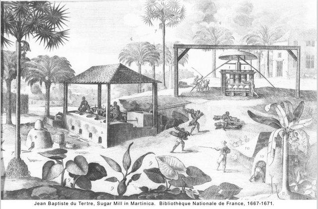 Jean Baptiste du Tertre, sugar mill in martinica