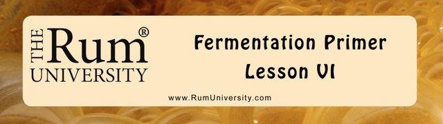 Fermentation Primer Lesson 6