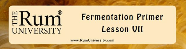 Fermentation Primer Lesson VII