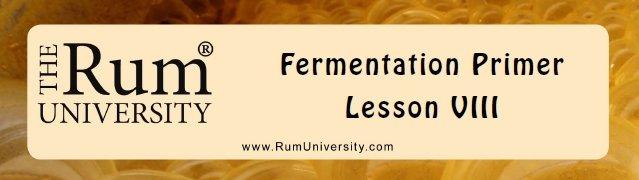 Fermentation Primer- Lesson VIII
