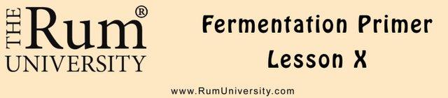 Fermntation Primer Lesson 10
