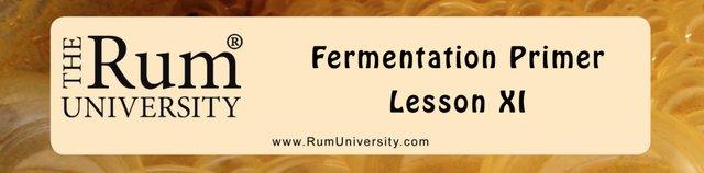Fermentation Primer Lesson XI