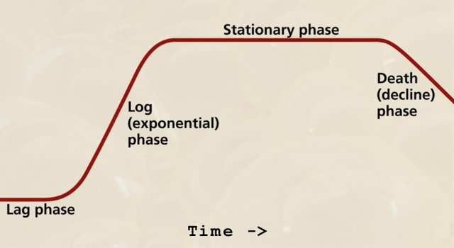 Stationary Phase