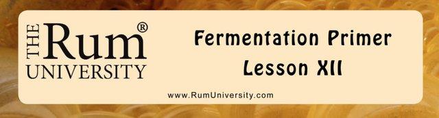 Fermentation Primer Lesson 12