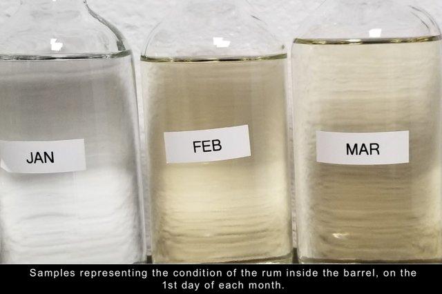 Samples in each barrel