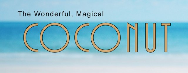The Wonderful, Magical Coconut