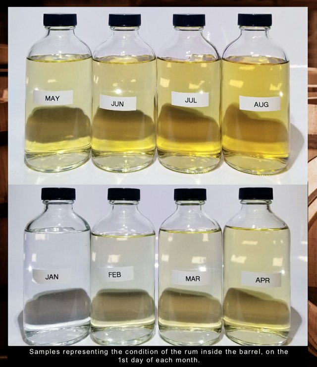 Samples of rum from Jan-Aug 2020
