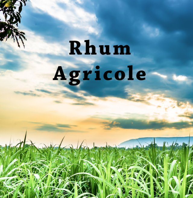Rhum Agricole title page