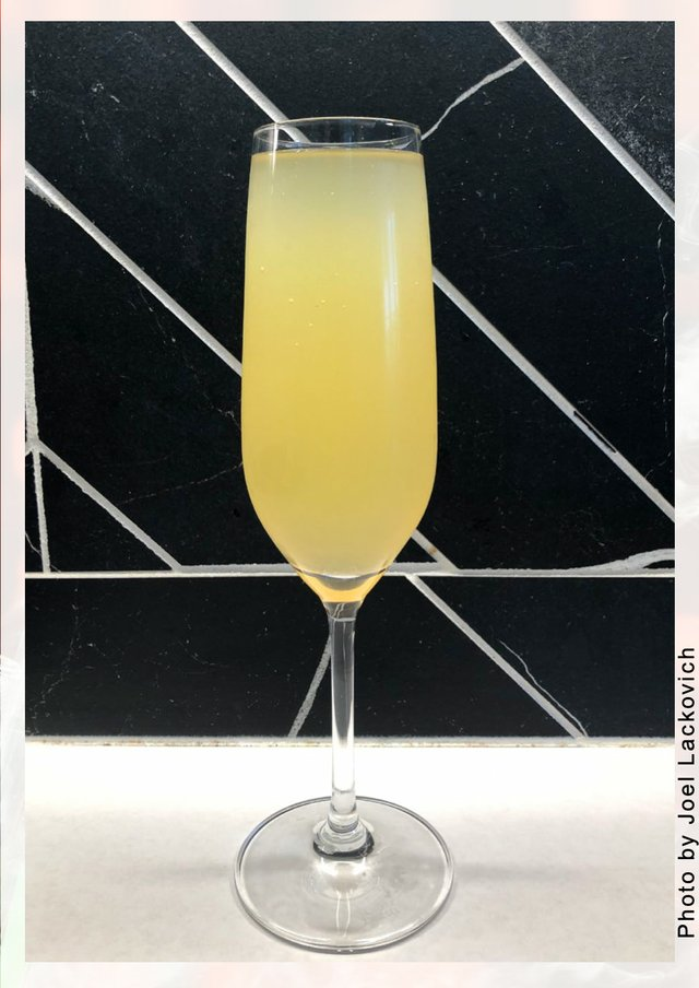 The Tropical Mimosa