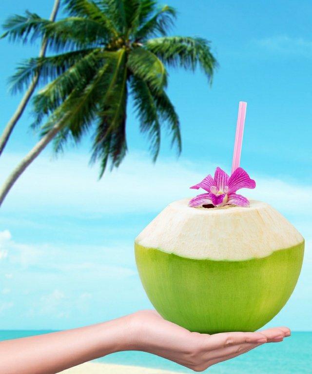 Cradling a delicious coconut