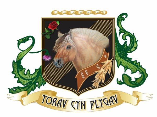 Torav Cyn Plygav