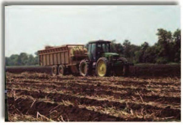 Planting - Louisianna Sugarcane Production