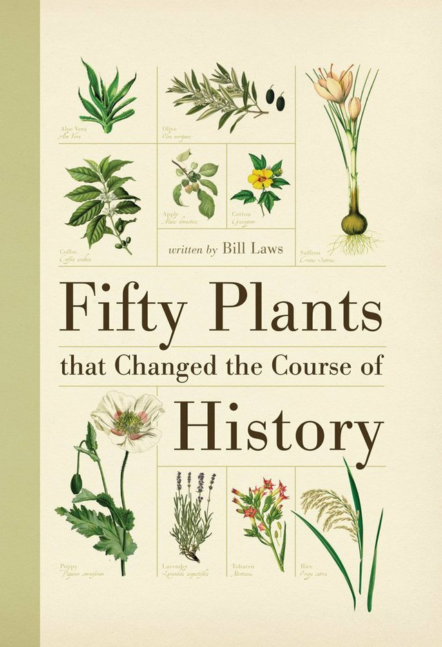 Fifty Plants